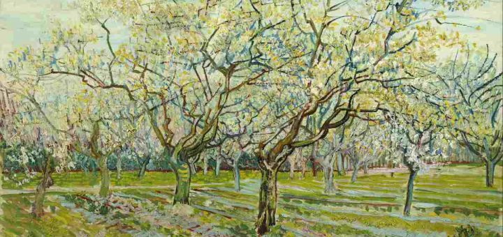 Vincent van Gogh - The white orchard (1)